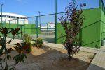 Foto Club de Tenis Olivenza 1