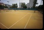 Real Club de Tenis Betis