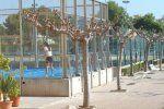 Foto Polideportivo Mas dels Frares 3