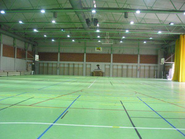 Centrodeportivomunicipalvicentedelbosque_1401724887.389.jpg