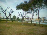 Foto Polideportivo Municipal de Gelves 0