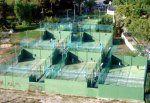Foto Asociación de Tenis Jerez - ATJ 1