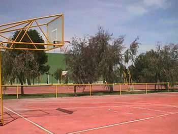 Real club tenis de zaragoza pistaenjuego for Piscina jose garces